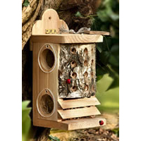 Insect Feeders