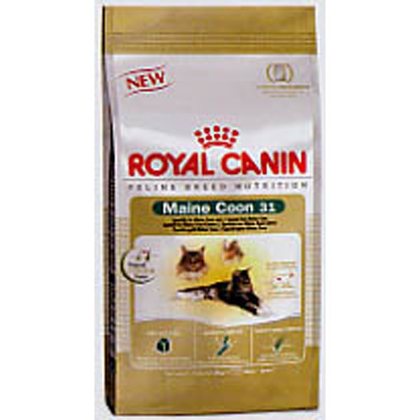 royal canin maine coon 31 cat food dry cat food cat. Black Bedroom Furniture Sets. Home Design Ideas