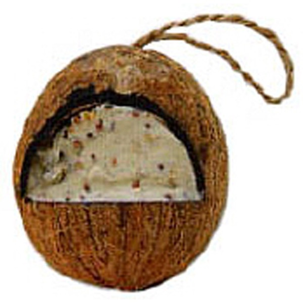Suet filled coconut for Whole coconut bird feeders