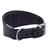 Greyhound & Whippet Collars