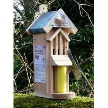 Butterfly Habitat Feeder