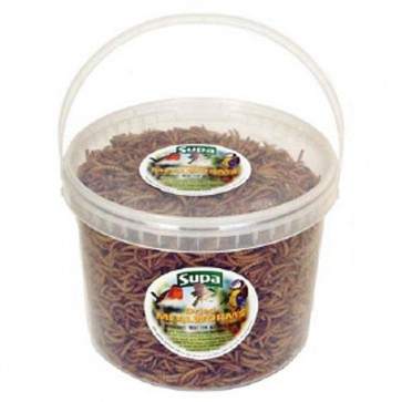 Dried Mealworms - 10 Litres