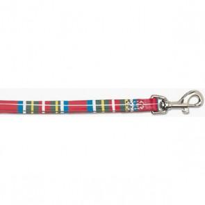 Tartan Dog Collar & Lead Set