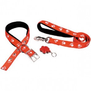 Reflective Paw Collar & Lead