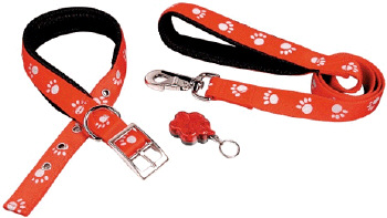 Paw Collar Lead