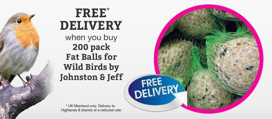 Wild Bird fat balls